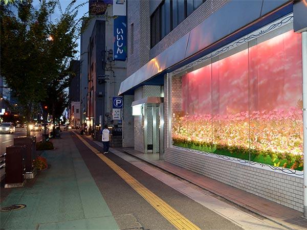 福岡支店 コスモスのディスプレイ